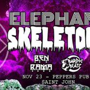 Elephant Skeletons + guests