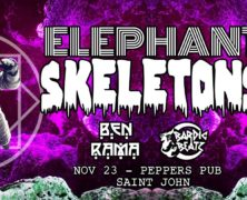 Elephant Skeletons + guests